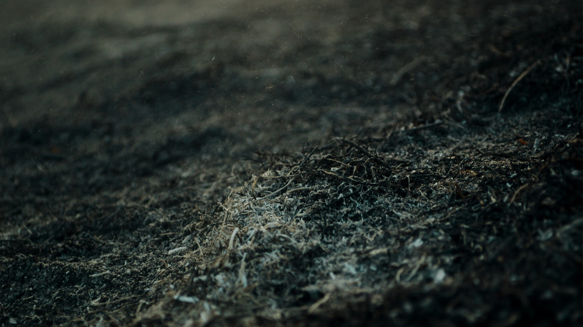 Dust Wallpapers
