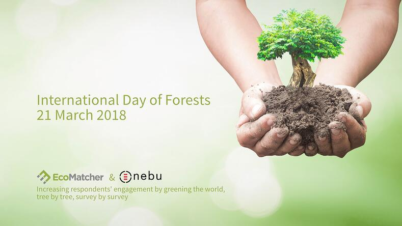 International Day Of Forests Wallpapers