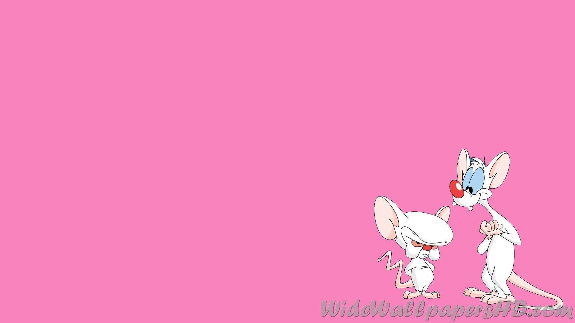 Pinky And The Brain Wallpapers