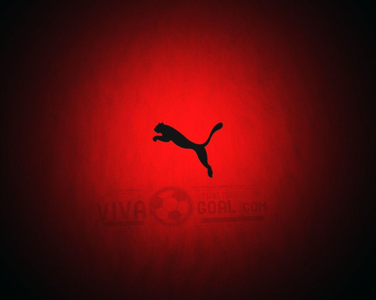 Puma Wallpapers