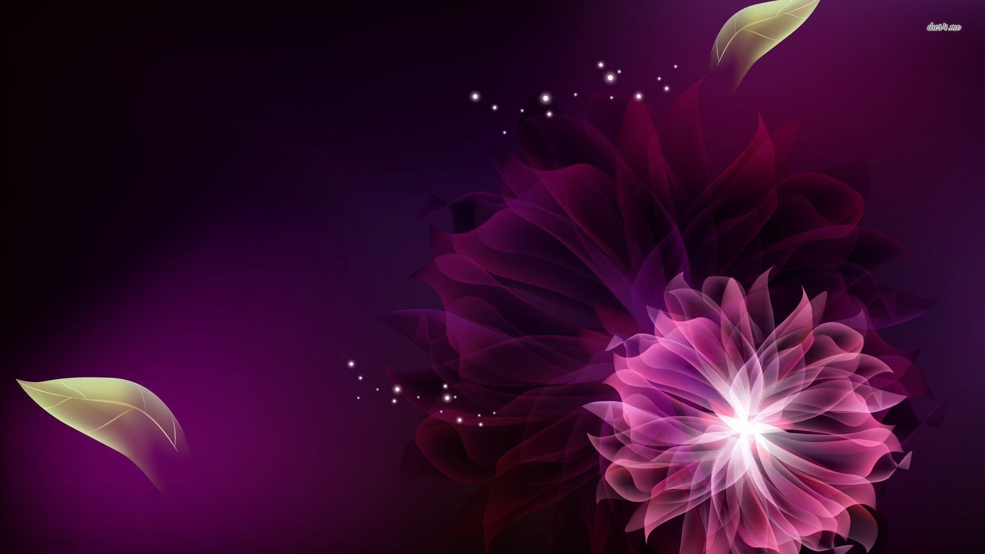Purple Flower Wallpapers