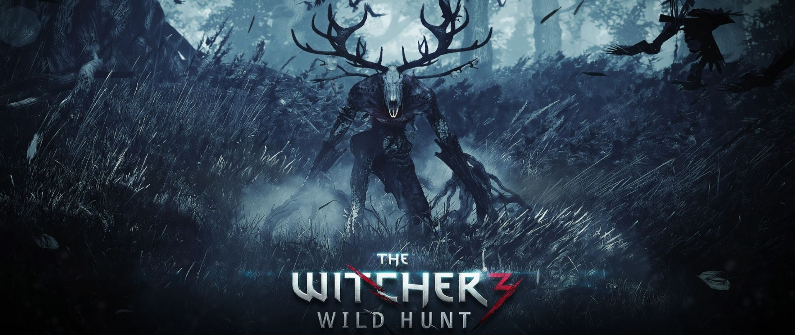 The Witcher 3 Wild Hunt Wallpapers