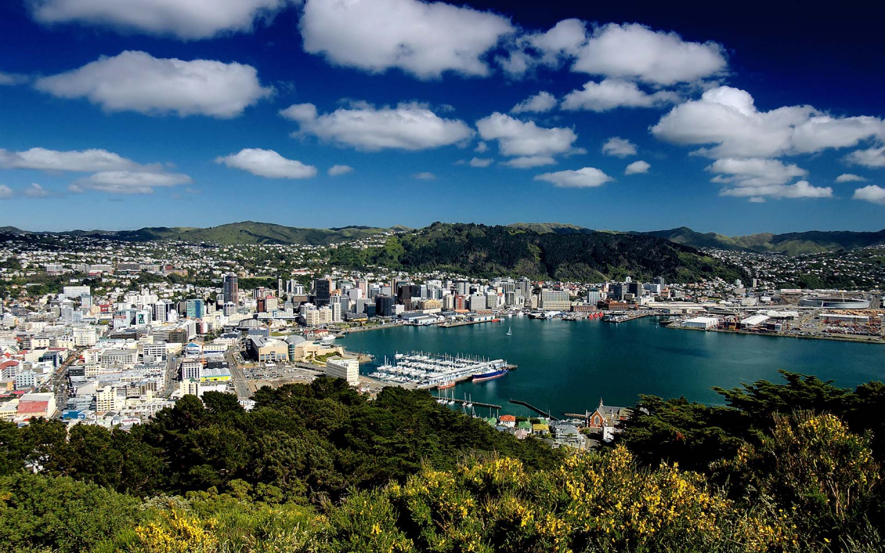 Wellington Wallpapers