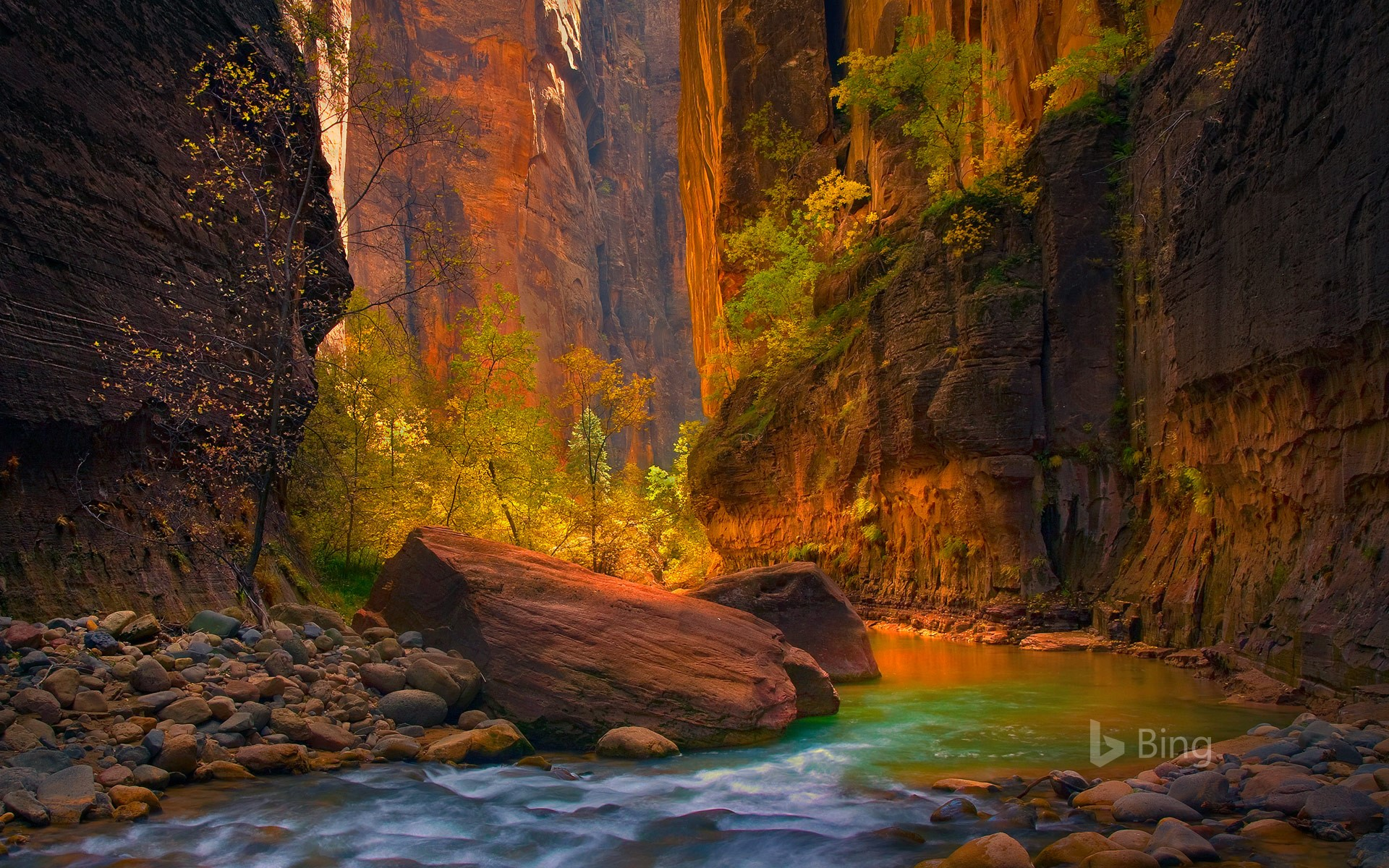 Zion National Park Wallpapers